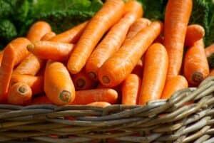 marchewki w wiklinowym koszu